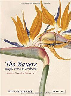 The Bauers: Joseph, Franz & Ferdinand: Masters of Botanical Illustration: Hans Walter Lack: 9783791354897: Amazon.com: Books