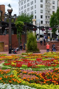 """Festival of Flowers at Portland's """"Living Room"""", Pioneer Courthouse Square, Portland, Oregon."""