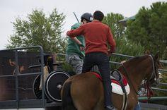 Hospital nacional de parapléjicos retoma su programa de terapia con caballos