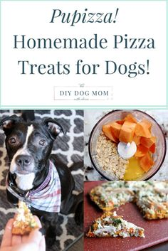 Pupizza! Homemade Pizza Treats for Your Dog   homemade dog treats   diy dog treats   healthy dog treats