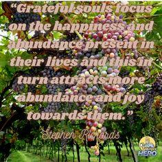and attract abundance Money Hero, Abundance, Grateful, Attraction, How To Become