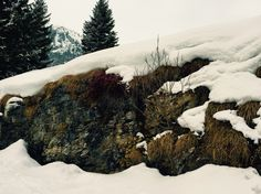 By the troll bridge in Flims Snowboard, Troll, Bridge, Places, Summer, Outdoor, Flims, Outdoors, Lugares