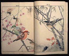 Fuck Yeah, Book Arts! (mothtales: lovely…) birds tree