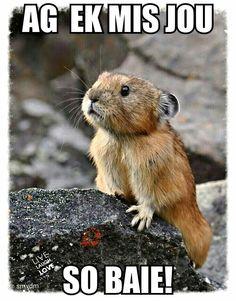 Ag ek mis jou so baie!: Critters, Animals, Nature, Creatures,
