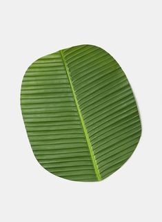 Get these banana leaf placemats and don& forget to also pick up seashells and other tropical decor elements. Create centerpieces of tropical fruit in pretty bowls and complete the look with a napkin wrapped in a banana leaf napkin ring at each pl Silk Plants, Faux Plants, Green Plants, Greenery Garland, Leaf Garland, Artificial Garland, Pink Stone, Tropical Decor, Place Settings