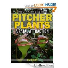 Pitcher Plants: A Fatal Attraction (Wild Nature Series)