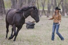 """Explore the life and growing career of Amber Marshall, star of """"Heartland,"""" Canada's longest-running hour-long dramatic television series. Watch Heartland now! Cowgirl And Horse, Horse Girl, Horse Love, Pretty Horses, Beautiful Horses, Heartland Quotes, Heartland Tv, Heartland Ranch, Heartland Seasons"""