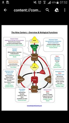 Spiritual Wellness, Spiritual Wisdom, Spell Your Name Workout, Human Design System, Projector Hd, Conscious Parenting, Astrology Numerology, Chakra Meditation, Body Love