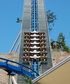 Dollywood's Wild Eagle! Love this ride. It's so fun.