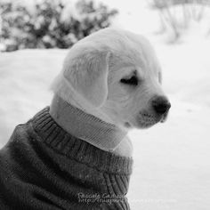 In the snow.. <3