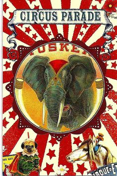 Vintage Circus Poster. Elephant. | Flickr - Photo Sharing!