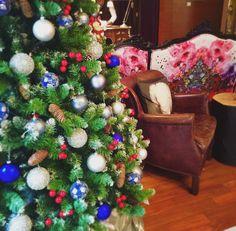 Christmas Setting 2015