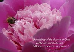 The Loveliness Of The Character Of Christ Will Be Seen