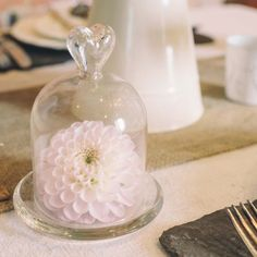 Mini-Glass-Dome-Bell-Jar-Cloche-Wedding-Table-Decorations-Favours-Vases