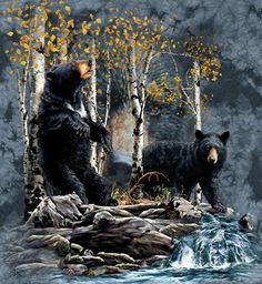 Bears, bears, bears, oh my!