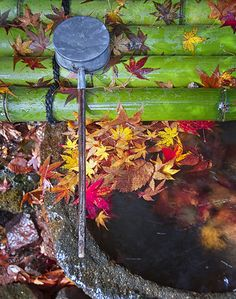 Chozu 手水: Water-filled basins are used by worshipers for washing their left hands, right hands, mouth and finally the handle of the water ladle to purify themselves before approaching the main Shinto shrine in Japan.