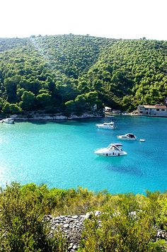 If you love peaceful, tranquil islands with clear blue sea and unspoilt landscape then Vis, Croatia is for you. Superb atmosphere. kayak-tour-vis-island-croatia (9) by lifejacketadventures, via Flickr