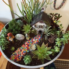 This is the mini garden I did out of mostly succulents. I combined last years fairy garden and the succulent pot I did at a class. I didn't like how crowded the pot was so I did this and I ❤️ it!