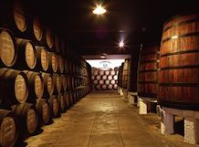 The Best Wineries and Vineyards in Portugal | Wine Tours and Tastings