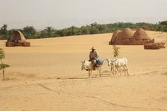 The water table is falling in Egypt's desert oases, raising questions of sustainability. Credit: Cam McGrath/IPS