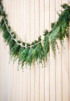 Herb Tassles---this could be another way to hang the ferns