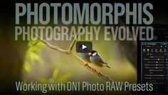 Free ON1 Photo RAW Preset Tutorial. Doug Landreth shows how easy it is to install and work creatively with the new presets from Photomorphis.
