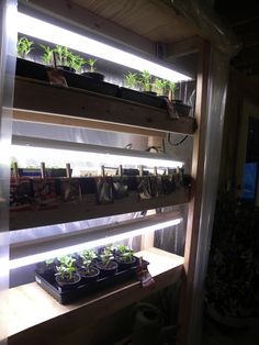 1000 images about basement greenhouse on pinterest indoor grow