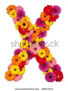 stock photo : Letter X - flower alphabet isolated on white background