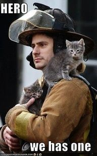 firefighter in denmark rescues cat | COMPASSION - Making a difference for others # 2