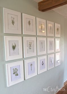 Gorgeous wall of botanical prints. Love this! Includes link to download the art for free