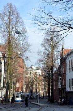 amsterdam travel travelblogger city guide bonnes adresses