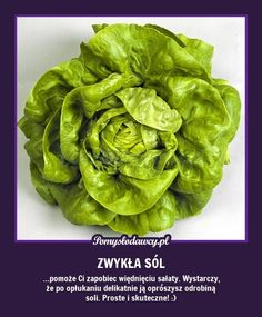 ZAPOBIEGNIJ WIĘDNIĘCIU SAŁATY - PROSTY TRIK :) Polish Recipes, Food Design, Kitchen Hacks, Good Advice, Fruits And Vegetables, Better Life, Keep It Cleaner, Good To Know, Home Remedies