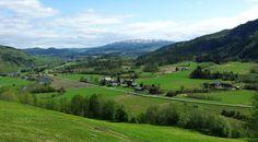 Nedre deler av Rindal sett fra Dalsegglia i Surnadal kommune.
