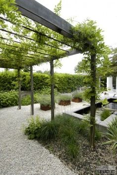 Simple contemporary landscape design