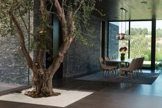 This modern house has an olive tree that lives in the foyer, with the help of grow lights, and off the the side, is a formal dining room. #DiningRoom #OliveTree