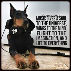 Music is good for the soul. #doberman #crazyrebels #quotes #inspiration #music