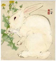 """Un lointain cousin japonais - dessiné par Takeuchi Seiho (1894-1942) Artiste japonais - Ukiyo-e - """"Lapin blanc en train de manger un pissenlit"""" - Impression sur bois"""