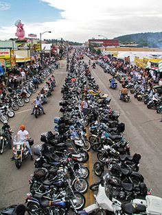 Sturgis Motorcycle Rally the full throttle the buffalo chip the stung is experience