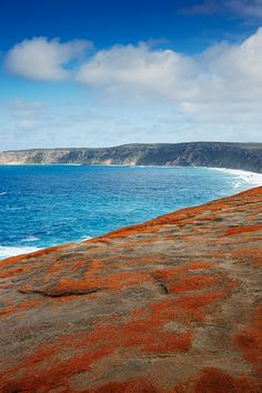 With its bounty of endemic flora and fauna, Kangaroo Island, about 180 miles southwest of Adelaide, is the Australian equivalent of the Galápagos—here, the island's Flinders Chase National Park.