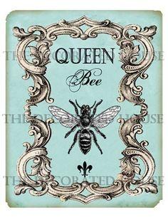 Queen Bee Digital Print