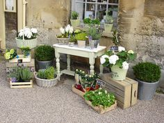 This is such a wonderful herb garden idea.  It is so artistic.  Love it.  Vintagerosegarden