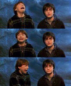 Harry Potter & Ronald Weasley