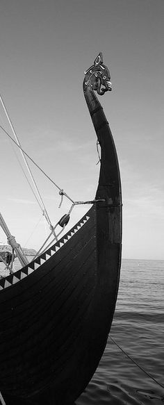 The Longships were a type of ship invented and used by the Vikings for trade, commerce, exploration, and warfare during the Viking Age.