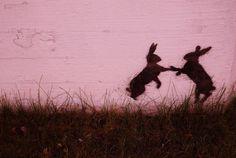 Bunny dance street art. Rovaniemi, Finland.  foto, bigamex flickr