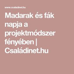 Madarak és fák napja a projektmódszer fényében | Családinet.hu Play To Learn, Kindergarten, Education, Learning, Green Day, School, Spring, Projects, Creative
