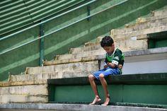 Chapecó, Brasil  Um menino senta-se sozinho na arquibancada no estádio Arena Conda durante uma homenagem aos jogadores da seleção brasileira Chapecoense real que foram mortos em um acidente de avião nas montanhas colombianas. A equipe brasileira foram viajar para Medellín, na Colômbia, para jogar Atlético Nacional, na primeira mão da Copa Sul-Americana