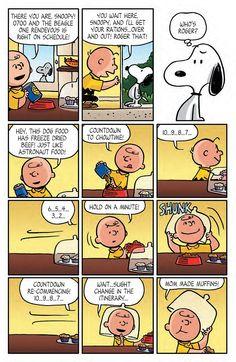 The Beagle Has Landed, Charlie Brown 4..Follow me & The Gang :)  https://www.pinterest.com/plzmrwizard67/