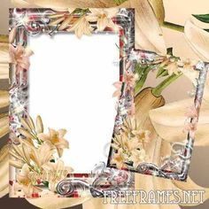 Free Frame for Photoshop