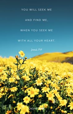 Jeremiah You will seek me and find me, when you seek me with all your heart. Inspirational Bible Quotes, Biblical Quotes, Religious Quotes, Bible Verses Quotes, Bible Scriptures, Healing Scriptures, Beautiful Bible Quotes, Niv Bible, Healing Heart Quotes