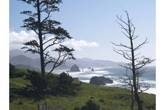 Overview of Seaside, Cannon Beach, Manzanita, and Newport! Great places for dogs!